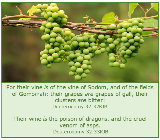 Deuteronomy 32_32.33