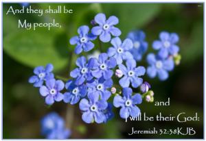Jeremiah 32_38KJB.png